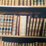 bookshelf-book-fabric-curtain-upholstery-cotton-material-digital-print-fabric-book-shelf-effect-55-wide-594be9734.jpg