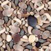 LARGE STONES Beach Pebbles Print Cotton Fabric - Curtain Upholstery Decor material - 140cm wide - brown grey